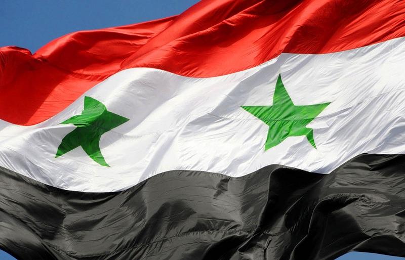 Conociendo a nuestros vecinos V: Variedades de aceituna y aceites virgen extra de Siria