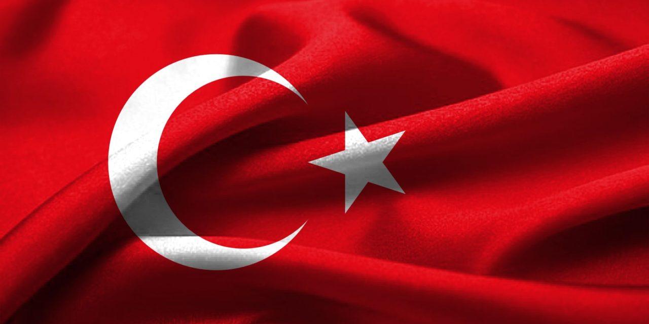 Conociendo a nuestros vecinos VIII: Variedades de aceite y aceituna de Turquía
