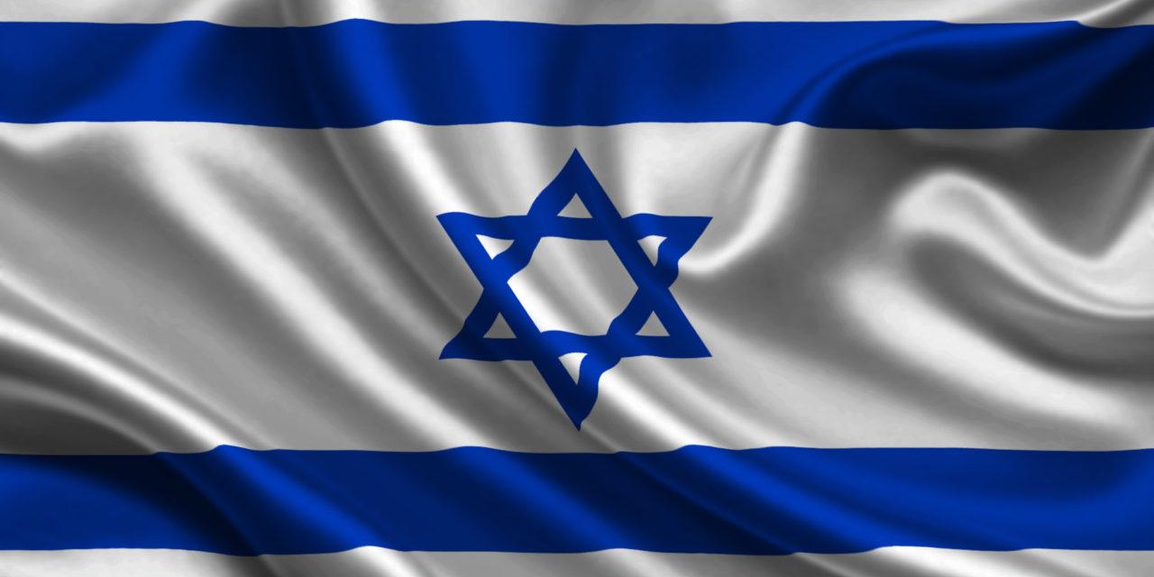 Conociendo a nuestros vecinos X: El Olivo en Israel