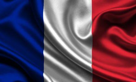 Conociendo a nuestros vecinos IV: Variedades de aceituna y aceites virgen extra de Francia