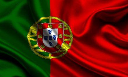 Conociendo a nuestros vecinos: Variedades de aceituna y aceites virgen extra de Portugal