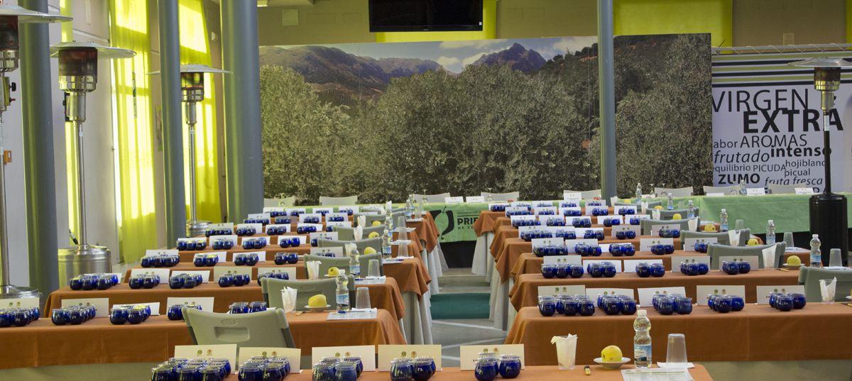¿En qué consiste un concurso de cata de aceite de oliva virgen extra?  Te lo contamos.