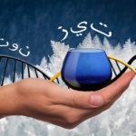 Aceite y Olivo: Curiosidades y Anécdotas II